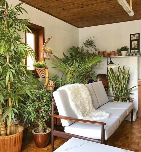 Simple living room design combine with plants decoration