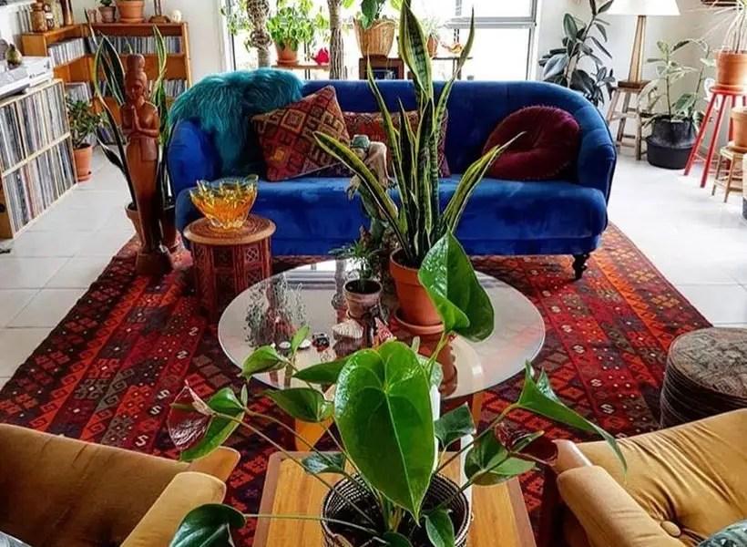 Instagram.com color-mix-and-plants-via-mary-thisthrifteda10f82c7b4843dda57950be1db554a28b