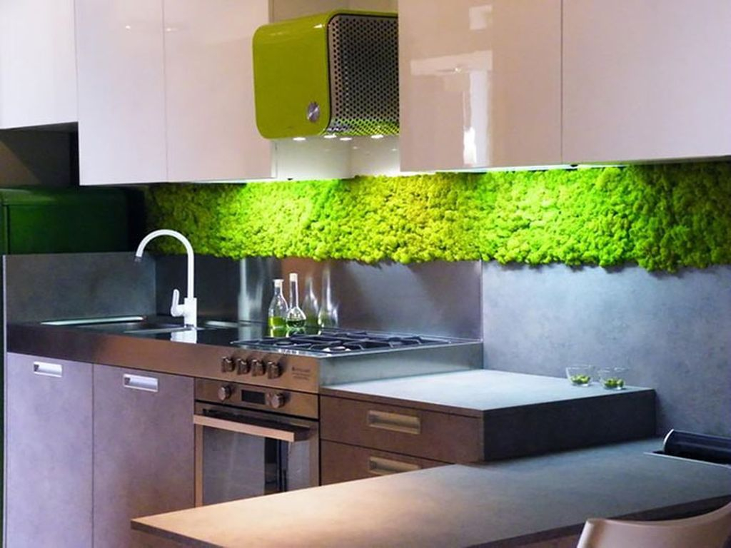 An amazing modern kitchen design with neutral color and moss wall in the wall to perfect in your kitchen