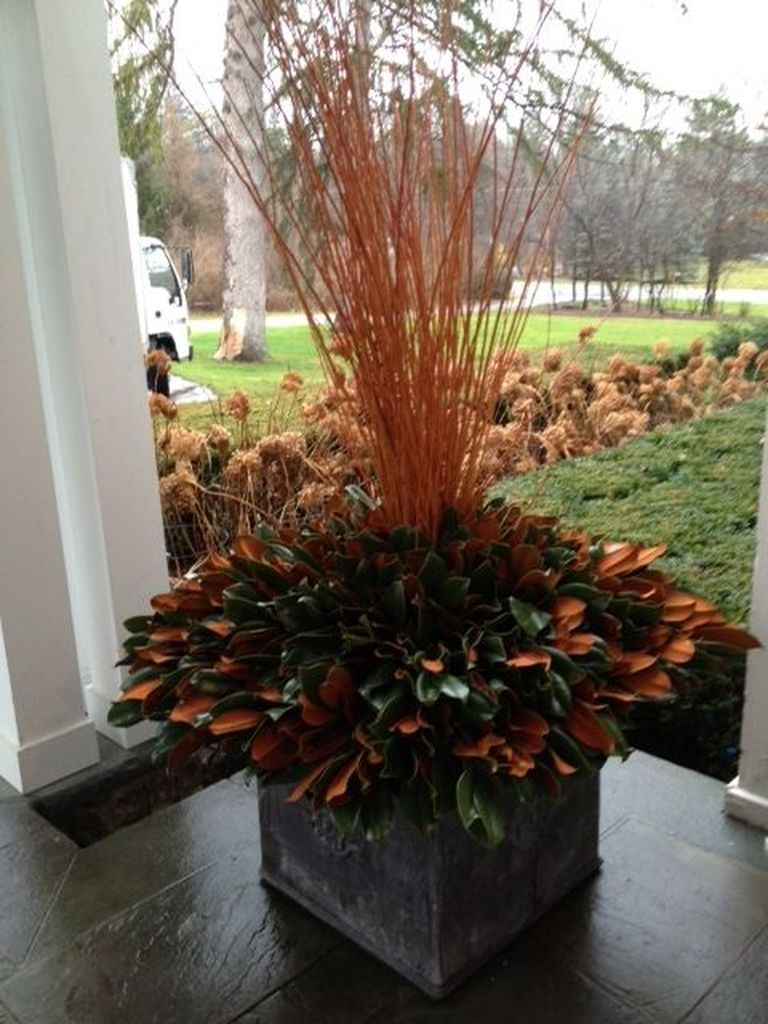 Fall decoration with straw and plants