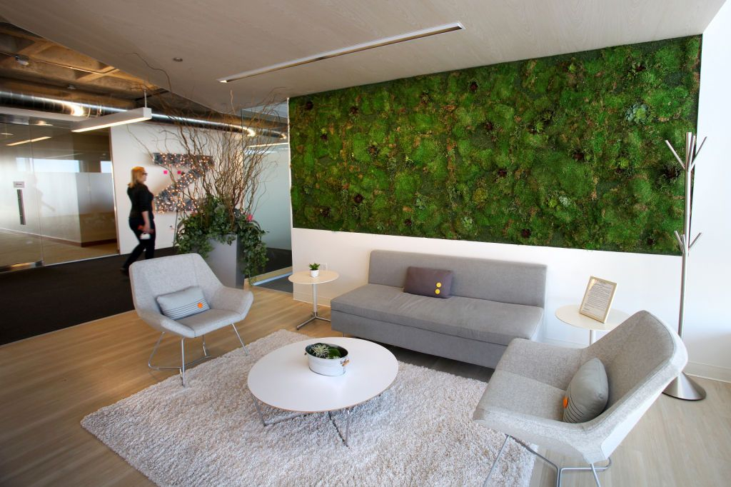 Minimalist modern living room with light grey sofa and fury carpet combined with moss wall to perfect your living room design