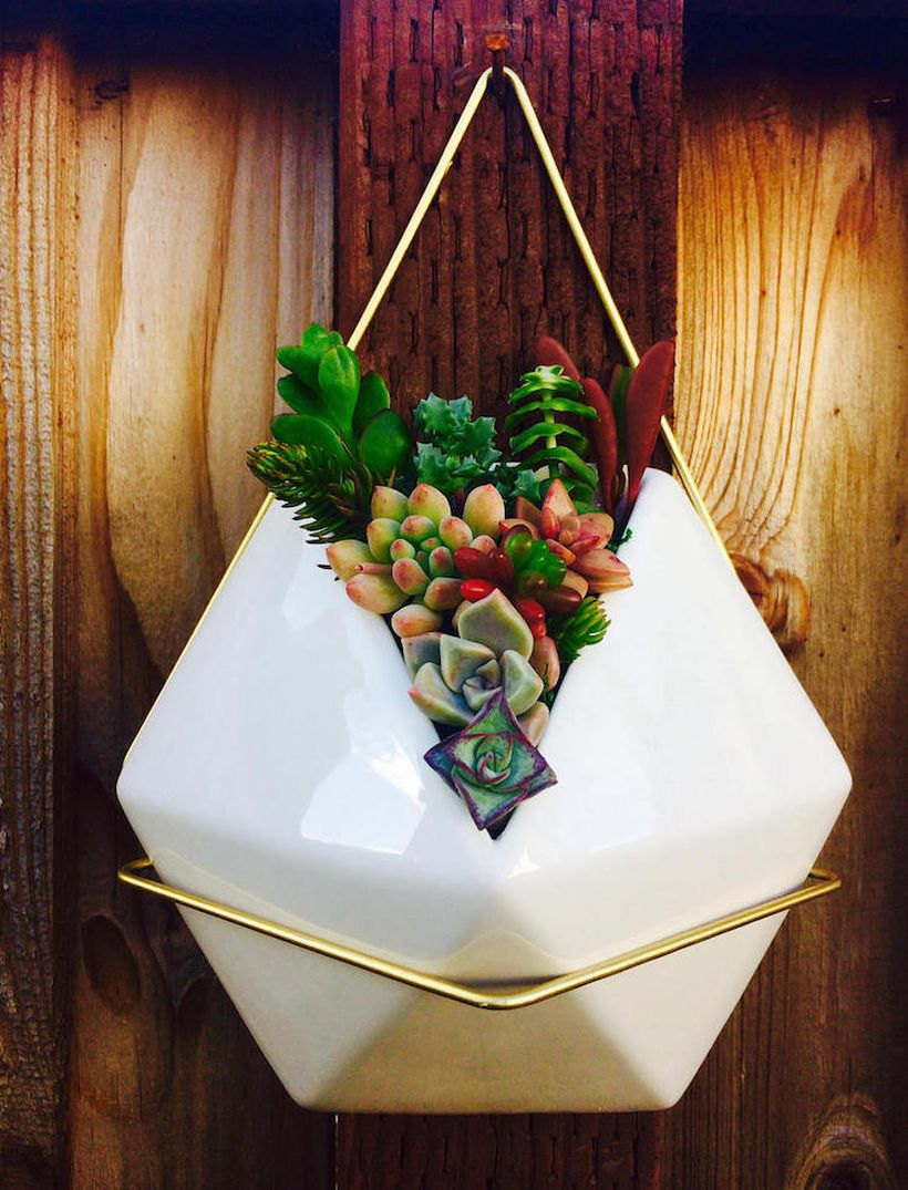 Unique hanging succulent ideas with white pentagon pot to complete decoration