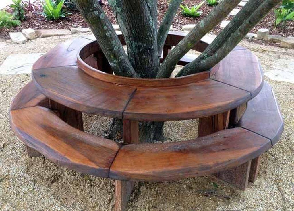 Wooden benches that surround the tree