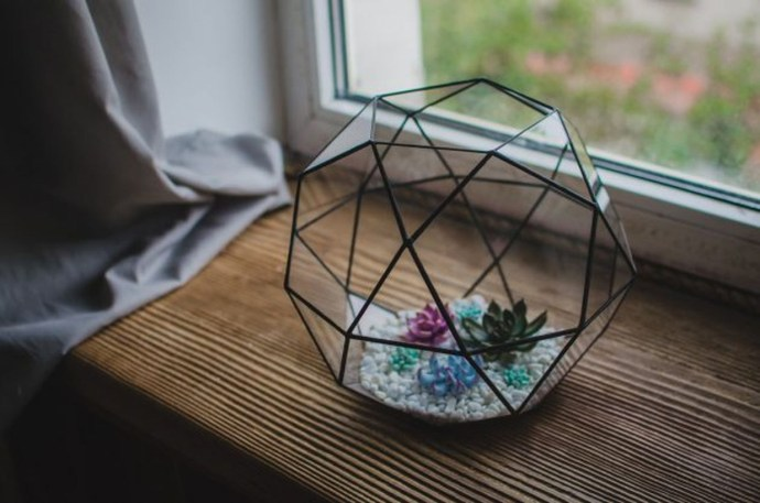 Awesome terrarium designs with black geometric terrarium for table decoration to create beautify