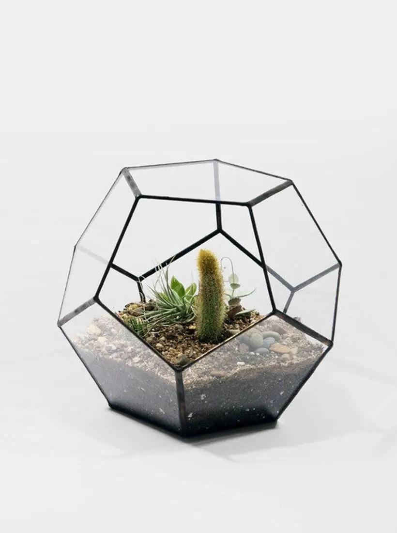 Best terrarium designs with geometric terrarium geometric terrarium hexagon shaped you must try