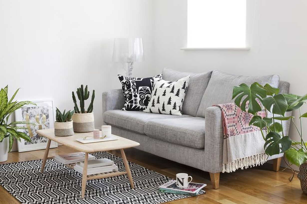 Best greenery for home decoration ideas with floor plants and trees and cactus to create beautify room