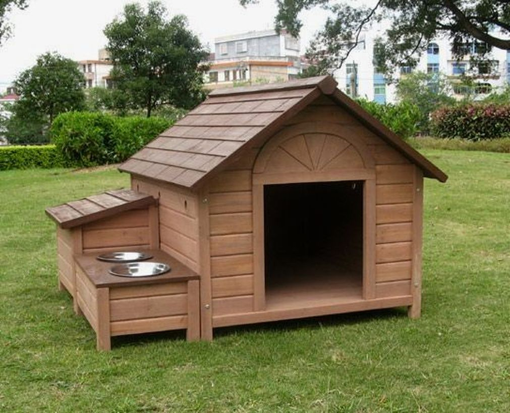 Elegant dog house in backyard