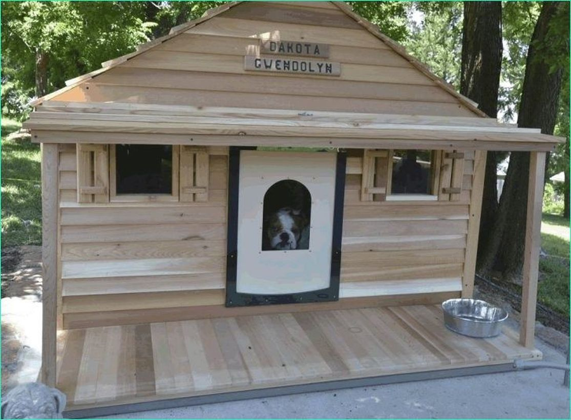 Large dog house for your pet