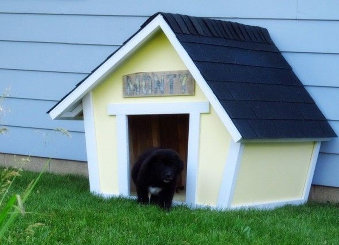 Small dog house in landscape