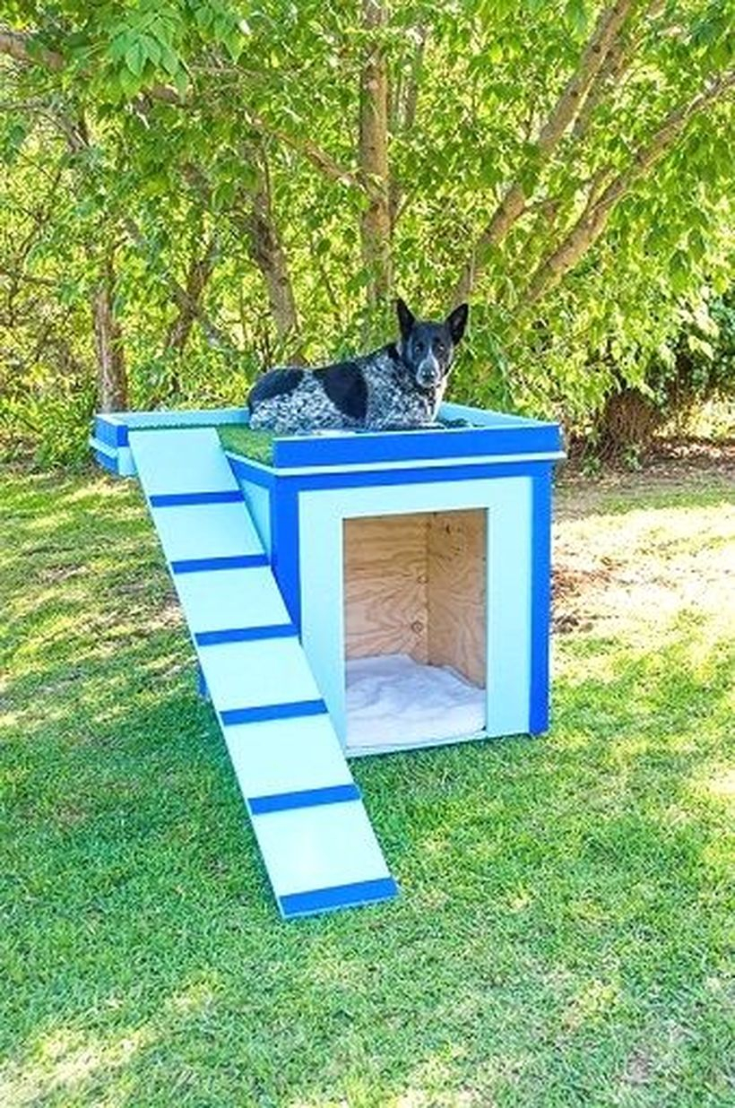 White and blue dog house in backyard