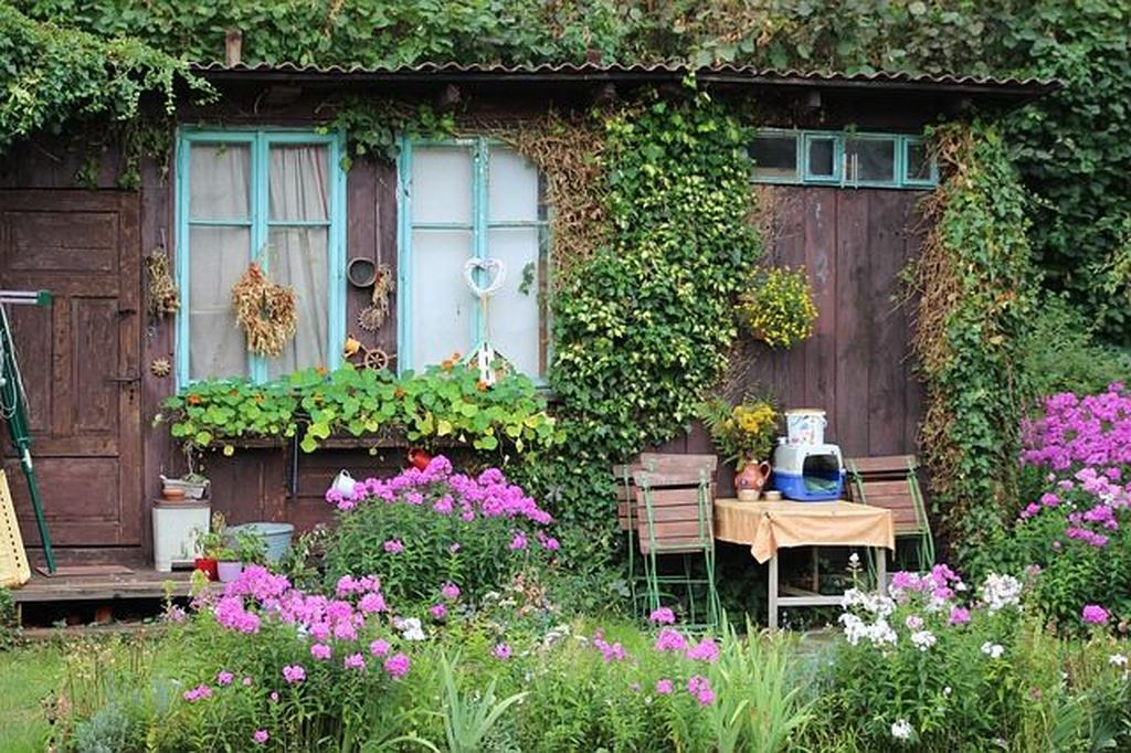 Natural shed combined with flower and plants