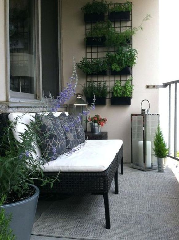 Affordable-balcony-garden-with-herb-and-vertical-place-attached-to-the-wall-using-black-iron-and-black-bench.