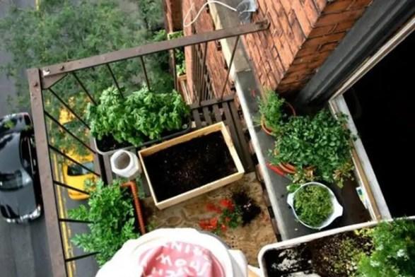 Balcony-garden8