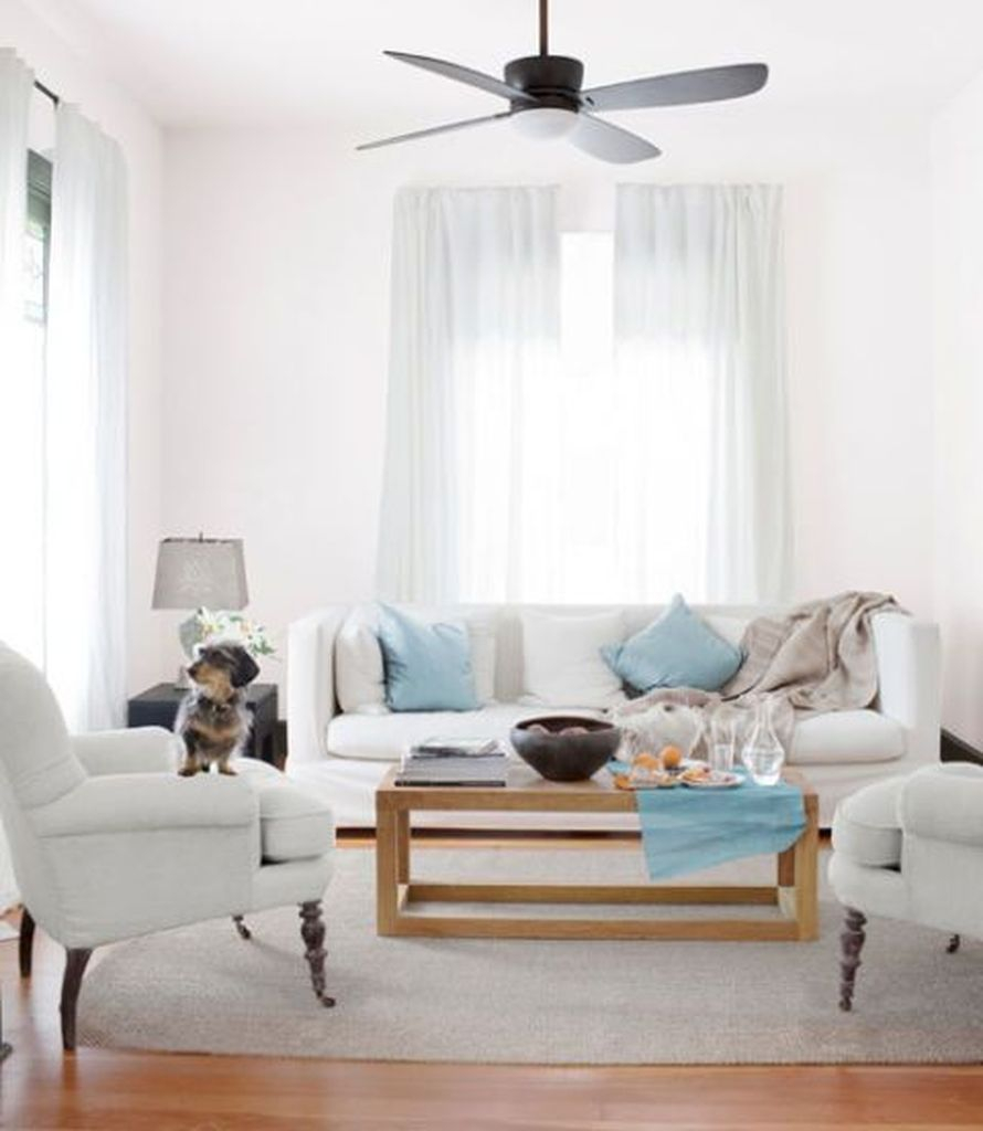 Bright living room with white colors