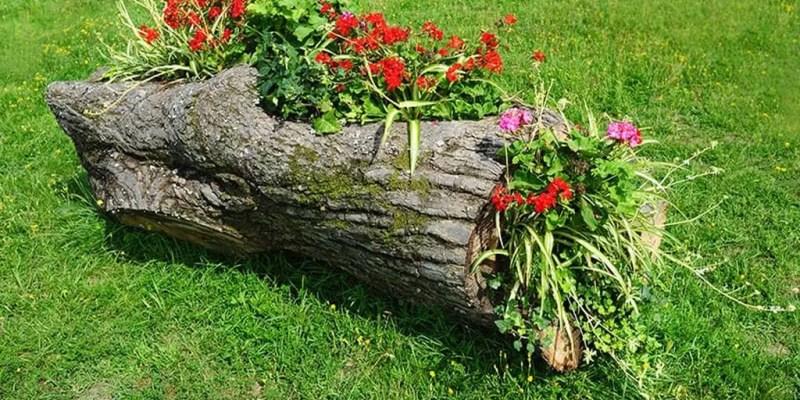 Wood-flower-bed