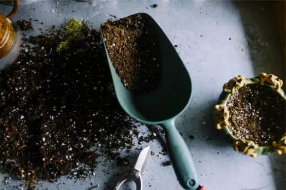Soil_myths-700x467-1