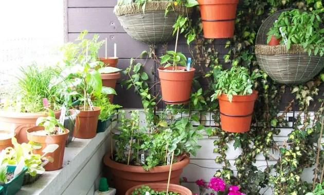 Balcony-garden-with-vertical-space