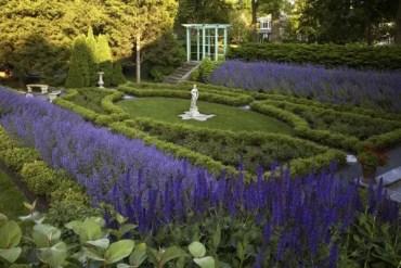 Traditional-lavender-garden-idea