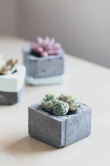 Diy-concrete-succulent-planters-10