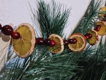 Driedfruit1