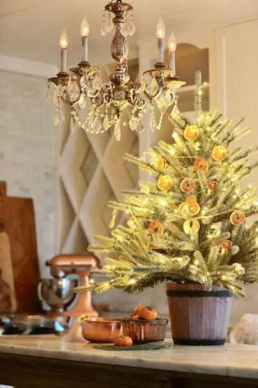 Citrus-christmas-tree-1574371092_edited