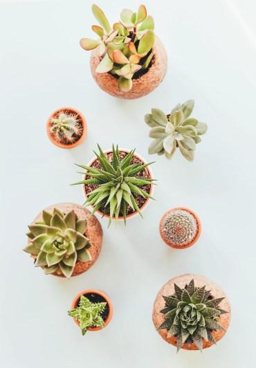 Faux+succulents+planter+arrangement
