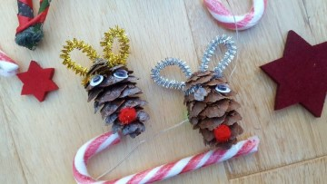 Pinterest-christmas-nature-crafts-blogger-collab-with-book-murmuration_05-1010x568