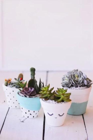 Succulent-plant-decor-idea-1