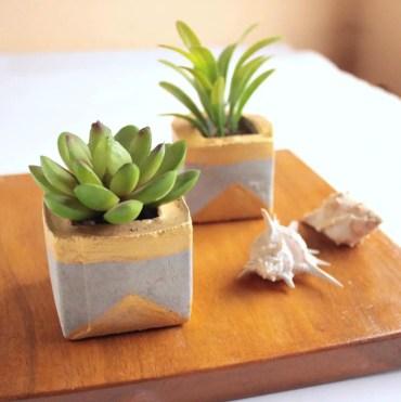 Succulents+planters+made+of+concrete