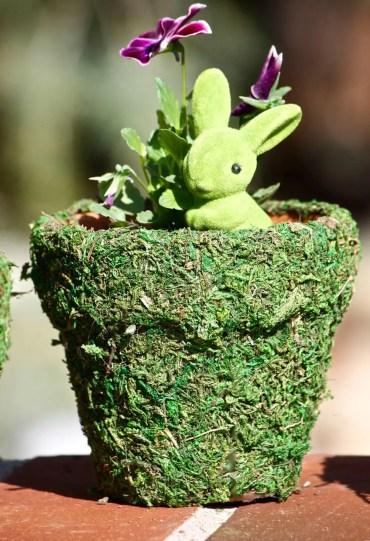 10-best-spring-planter-ideas-designs-decor-homebnc