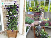 Cool garden ideas that will get your outdoor ready to welcome the lovely spring season fi