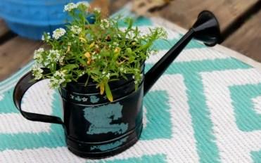 Creative-planter-ideas--800x501