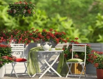 Fresh and cozy balcony area