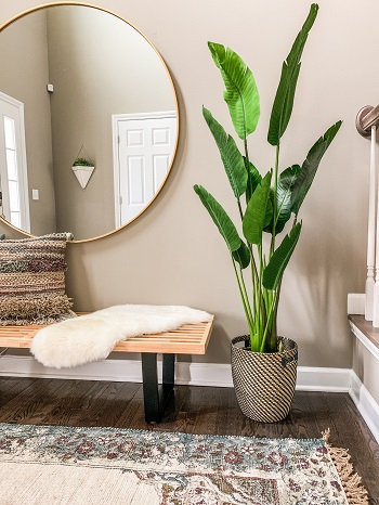 Insert greenery Captivating Entryway Ideas That Are Too Good To Be True