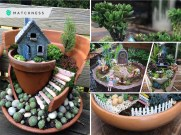 Ultra-gorgeous miniature fairy garden design that is trendy for backyards and anywhere 5