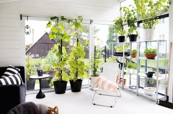 Unique orangery for listening to the rain or enjoy the nature during dinner 4