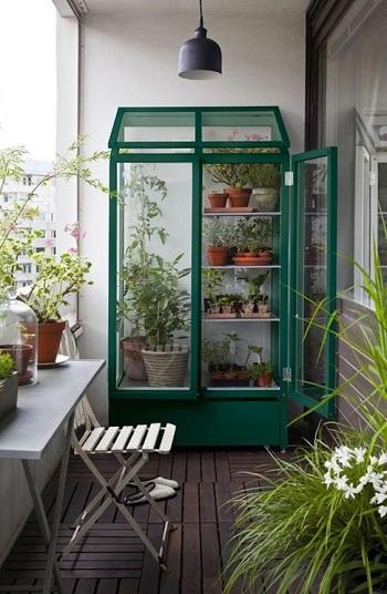 A bold greenhouse with planters