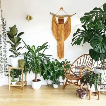 Cozy-modern-indoor-garden-design