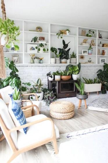 Indoor-garden-2-1