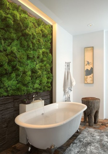 Living moss wall with a wooden part