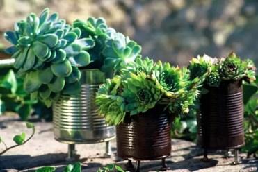 Mini-tin-can-flower-garden-backyard-creative-decor