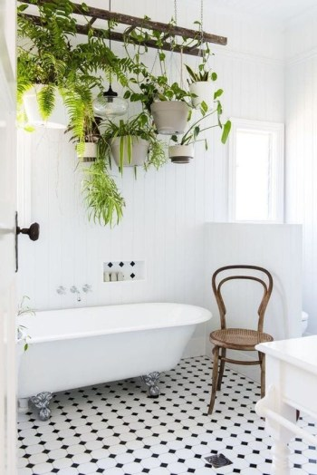 Vintage ladder with potted greenery