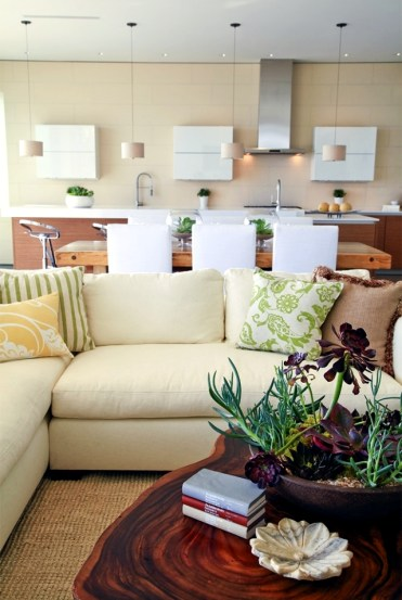 1-32-ideas-for-interior-decoration-plants-creative-containers-and-packages-13-175