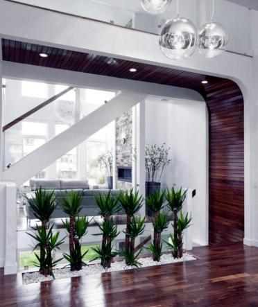 1-32-ideas-for-interior-decoration-plants-creative-containers-and-packages-7-175