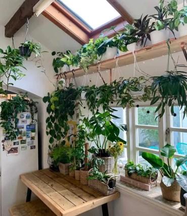1-hanging-planter-indoor-garden-ideas-its_green_up_north-1316x1536-1