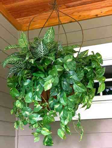 2-diy-fake-plant-decor-screen-porch