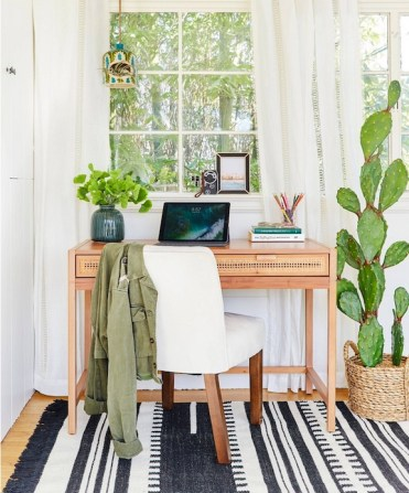 Faux-cactus-large-in-office-target