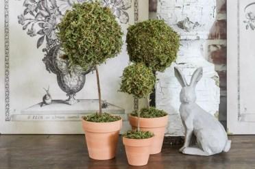 Mini-moss-ball-topiary-diy