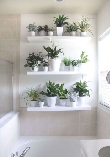 Home-decor-ideas-with-plants-4