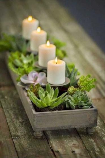 Home-decor-ideas-with-plants-8